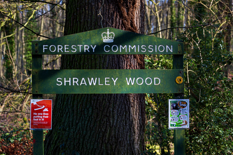 house sitting witley shrawley wood travel is sweet