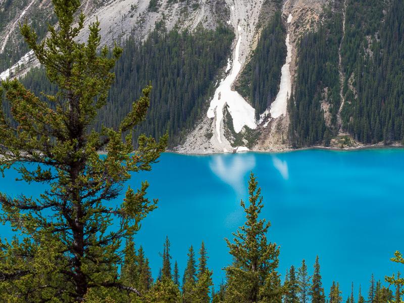 my top 10 destinations peyto lake landslip travel is sweet